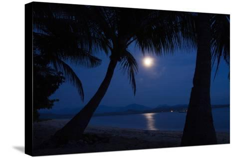 Moonlight on the Water-SerrNovik-Stretched Canvas Print