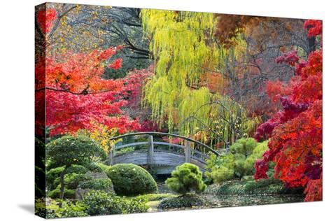 Moon Bridge in the Japanese Gardens-Dean Fikar-Stretched Canvas Print