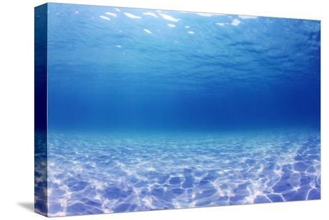 Underwater Background in the Sea-Rich Carey-Stretched Canvas Print