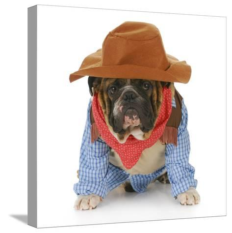 Dog Dressed Up Like a Cowboy-Willee Cole-Stretched Canvas Print