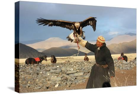 Mongolia - 25 July: the Senior Mongolian Horseman in Traditional Clothing with Golden Eagles During-TTstudio-Stretched Canvas Print