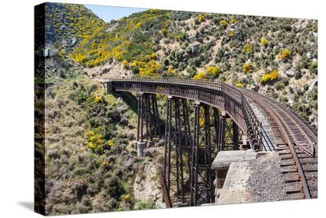 Railway Bridge on Taieri Gorge New Zealand-BackyardProductions-Stretched Canvas Print
