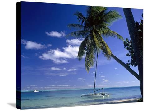 Catamaran Bora Bora-Ron Whitby Photography-Stretched Canvas Print