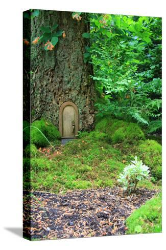 Little Fairy Tale Door in a Tree Trunk.-Hannamariah-Stretched Canvas Print
