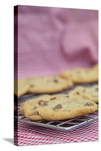 Beautiful Fresh Hand Made Chocolate Chip Cookies-Veneratio-Stretched Canvas Print