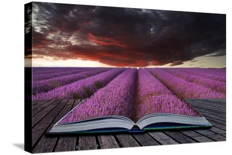 Creative Concept Pages of Book Stunning Lavender Field Landscape Summer Sunset under Moody Red Stor-Veneratio-Stretched Canvas Print