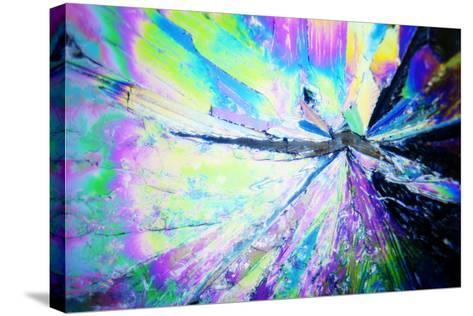 Micro Crystals-3quarks-Stretched Canvas Print