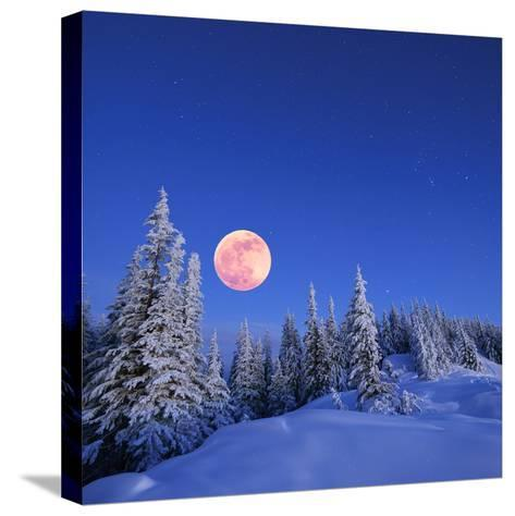 Winter Landscape in the Mountains at Night. A Full Moon and a Starry Sky. Carpathians, Ukraine-Kotenko-Stretched Canvas Print