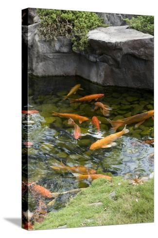 Koi Pond-dosecreative-Stretched Canvas Print