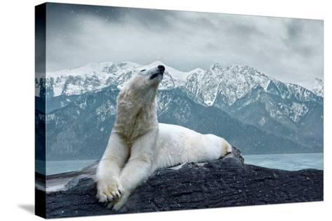 White Polar Bear on the Ice-yuran-78-Stretched Canvas Print