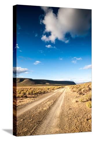 Karoo Desert Gravel Road-dan-edwards-Stretched Canvas Print