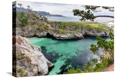 Point Lobos State Natural Reserve-Wolterk-Stretched Canvas Print