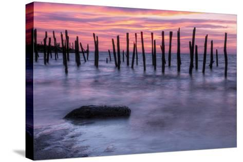 Delaware Bay Sunrise-michaelmill-Stretched Canvas Print