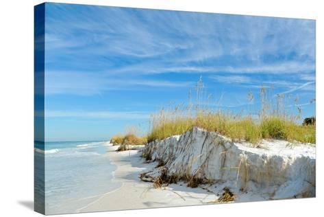 Beautiful Florida Coastline-EyeMark-Stretched Canvas Print