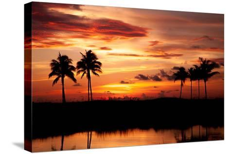 Tropical Sunset with Palm Trees-Paul Brady-Stretched Canvas Print