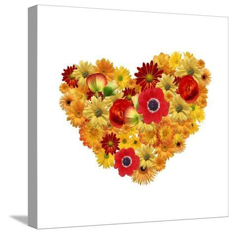 Heart. Chamomile Flowers Background-Anna Ismagilova-Stretched Canvas Print