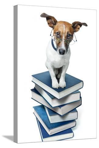 Dog Book Stack-Javier Brosch-Stretched Canvas Print