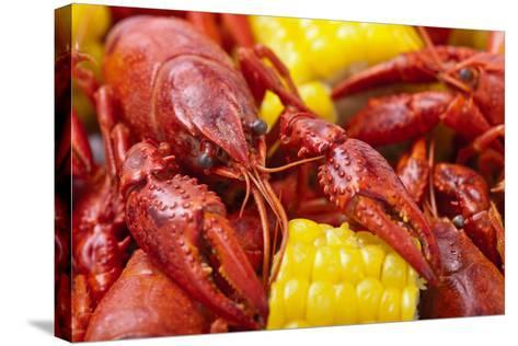 Crayfish Boil- -=Viktor=--Stretched Canvas Print