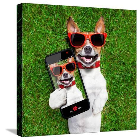 Funny Selfie Dog-Javier Brosch-Stretched Canvas Print