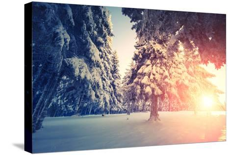 Fantastic Evening Landscape in a Colorful Sunlight. Dramatic Wintry Scene. National Park Carpathian-Leonid Tit-Stretched Canvas Print