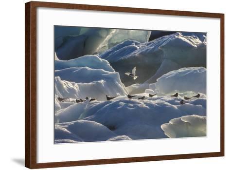 Iceland 6-Art Wolfe-Framed Art Print