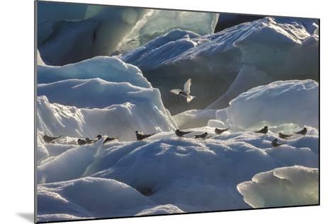 Iceland 6-Art Wolfe-Mounted Photographic Print