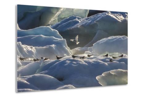 Iceland 6-Art Wolfe-Metal Print