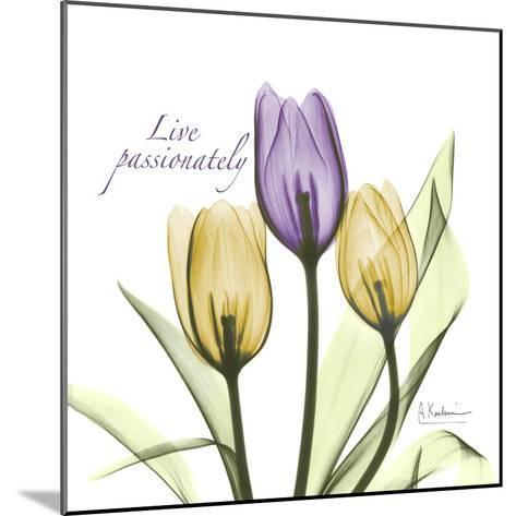 Passionately Tulip-Albert Koetsier-Mounted Premium Giclee Print