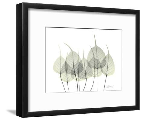 Bodhi Family Tree-Albert Koetsier-Framed Art Print