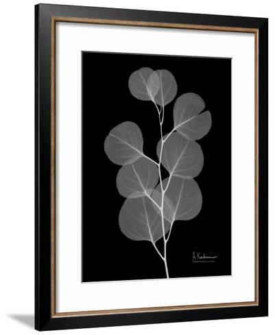 Eucalyptus E196-Albert Koetsier-Framed Art Print