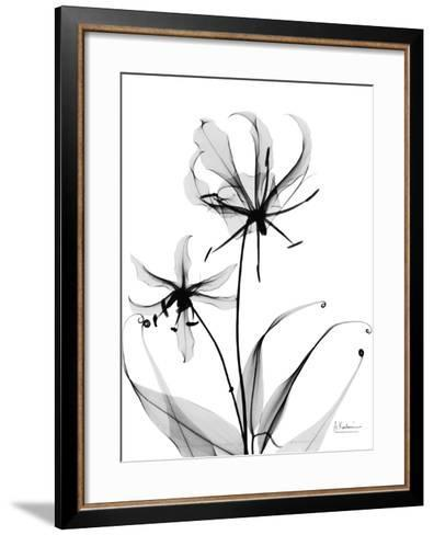 Gloriosa Lily-Albert Koetsier-Framed Art Print