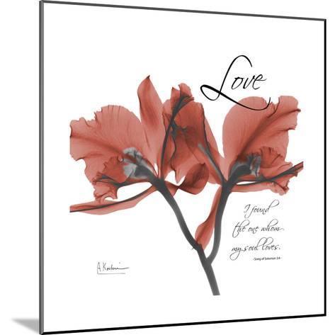 Love Orchid-Albert Koetsier-Mounted Premium Giclee Print
