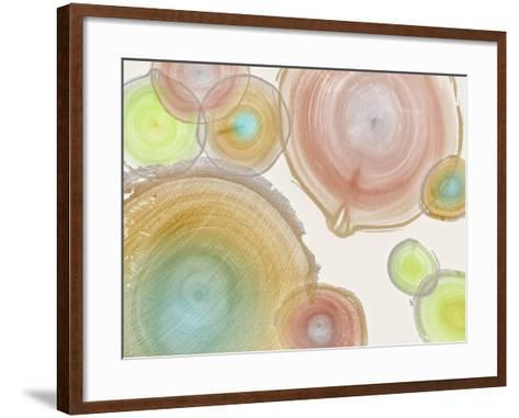 Tree Ring I-Albert Koetsier-Framed Art Print