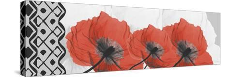 Ikat Poppies-Albert Koetsier-Stretched Canvas Print