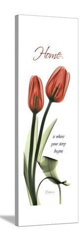 Home Tulips-Albert Koetsier-Stretched Canvas Print