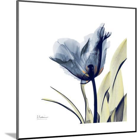 Tulip Whisper-Albert Koetsier-Mounted Art Print