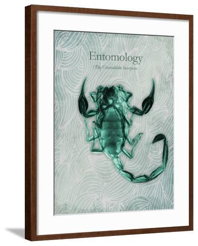 Unassailable Scorpion-Albert Koetsier-Framed Art Print