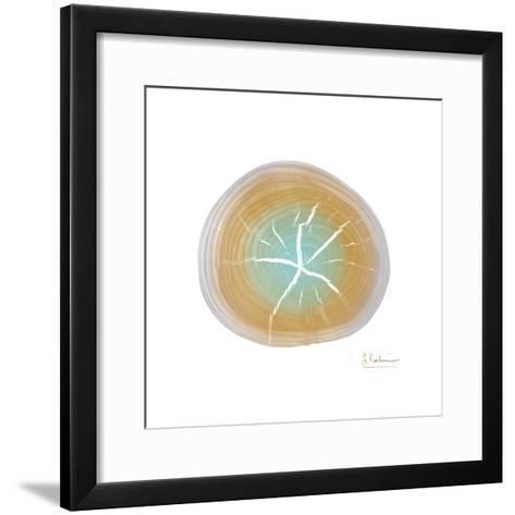 Tree Ring 7-Albert Koetsier-Framed Art Print