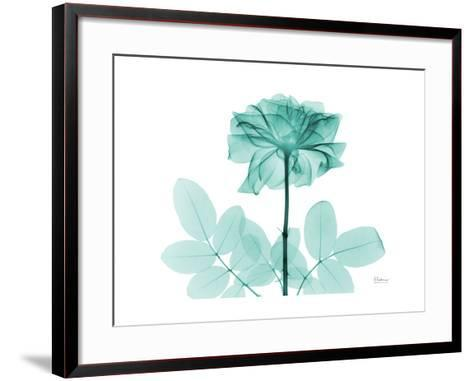 Tea Rose 2-Albert Koetsier-Framed Art Print