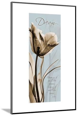 Tulip Dream-Albert Koetsier-Mounted Premium Giclee Print