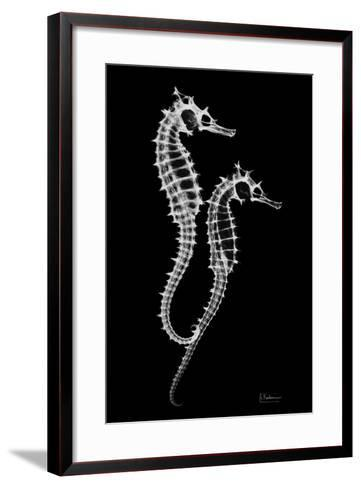 Sea Horse Xray-Albert Koetsier-Framed Art Print