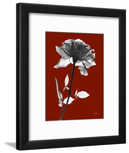 Tonal Rose on Crimson-Albert Koetsier-Framed Art Print