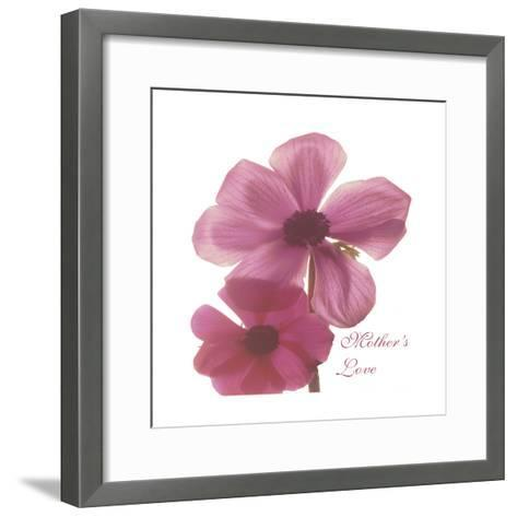 Magnolia Pair-Albert Koetsier-Framed Art Print
