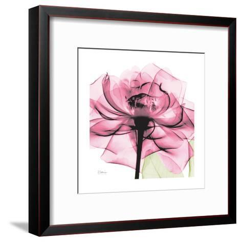 Rose Pink-Albert Koetsier-Framed Art Print