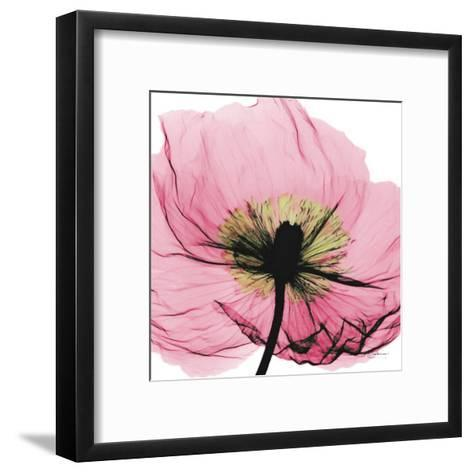 Poppy Pink-Albert Koetsier-Framed Art Print