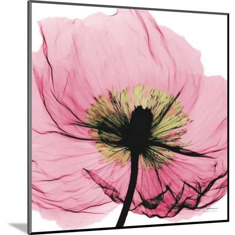 Poppy Pink-Albert Koetsier-Mounted Art Print