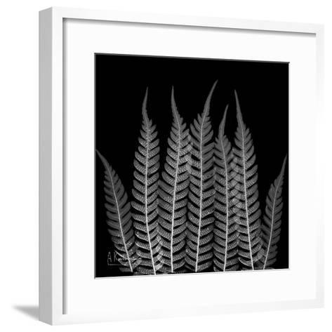 Xray Tree Fren-Albert Koetsier-Framed Art Print