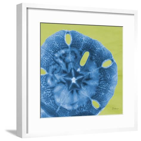Neon Sand Dollar-Albert Koetsier-Framed Art Print