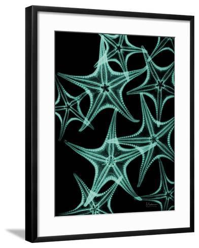 Starfish 1-Albert Koetsier-Framed Art Print