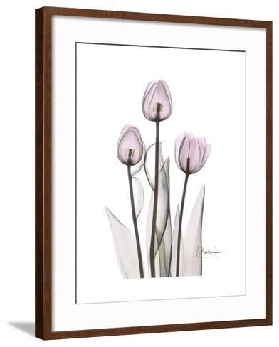 Pink Tulip Portrait-Albert Koetsier-Framed Art Print
